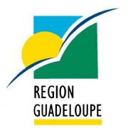 https://guadeloupe.profession-sport-loisirs.fr/sites/national/files/assos/datas/guadeloupe_profession_sport_loisirs_fr/large_logo_region-guadeloupe.jpg